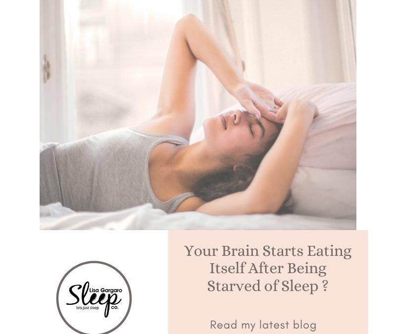 Lisa Gargaro Sleep Co – Blog – Your brain starts eating itself after being starved of sleep